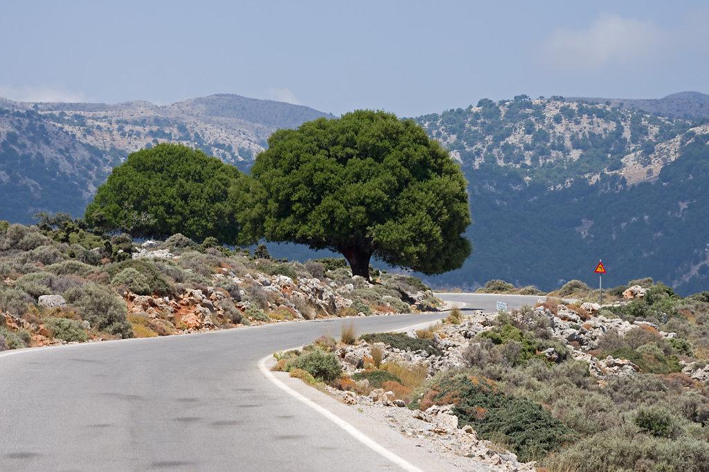 Straße zur Katharo Hochebene